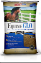 Bragg'N Time Equine GLO - Coastal Ag Supply