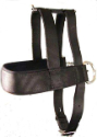 Valhoma® Pulling Harness - Coastal Ag Supply
