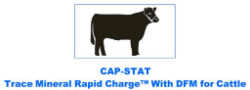 CAP-STAT Trace Mineral Rapid Charge™ with DFM for Cattle - Coastal Ag Supply