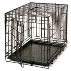 Pet Lodge™ Wire Pet Crate - Coastal Ag Supply